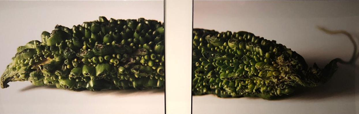 Karela 2015. Diptych. Fujicolor Crystal  Professional  paper, 249 mg. Edition of 3 + 2 A.P  75 x113 cm