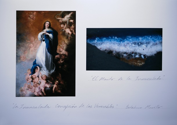 "Work-document of ""Study of Pictorial Anatomy: ""The Immaculate Conception of the Venerables"". The Mantle of the Immaculate Conception"", 2019."